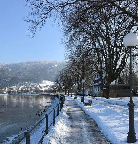 Am See #bregenz#visitvorarlberg#visitaustria#meinvorarlberg#schnee#snow#bäume#trees#bodensee#unserbodensee#wirtshaus#pfänder#berge#mountains#festspiele#photography#photooftheday#photographer#laterne#wasser#sonnenschein#skylove#himmelliebe#vögel#tiere#weg#eisig#astwerk#bank#blauerhimmel# Bodensee Bregenz :))