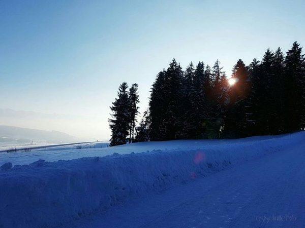 Ein Traumtag - a beautiful day ☺ #hellofromösterreich #winterwalk #wanderlust #winterwonderland #snow #eveningmood ...