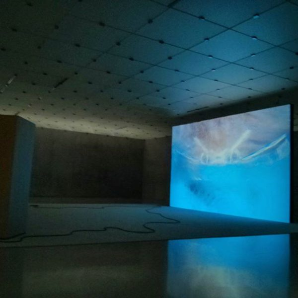 The Rachel Rose #exhibition at Kunsthaus Bregenz is a bodily experience and sensual ...