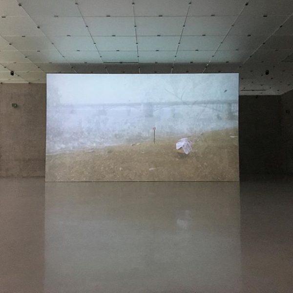 a bit of culture in Austria #bregenz #rachelrose #art #kunsthaus #installation #daytrippin #trio ...