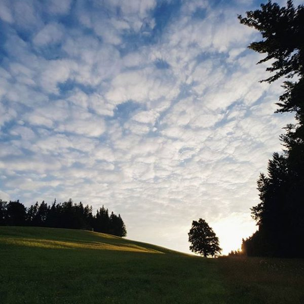 When the sun rises over the moors in Krumbach . . . . ...