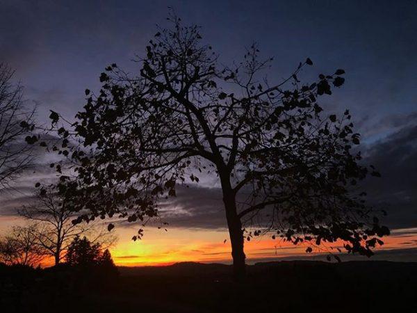 Herbstabend in Sulzberg #bregenzerwald #vorarlbergwandern #vorarlberg #explorevorarlberg #hiking #nature #beautifuldestination #sunset #vorarlberg #austria ...