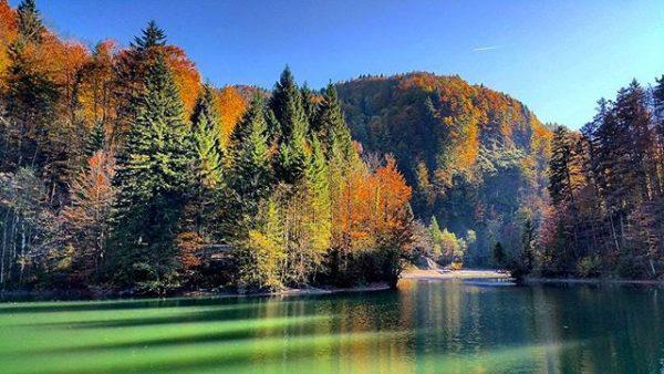 Abendspaziergang am Staufensee 🍁🍂 #dornbirn #staufensee #rappenlochschlucht #vorarlberg #ig_austria #lake #herbst #soschön #abendamsee ...