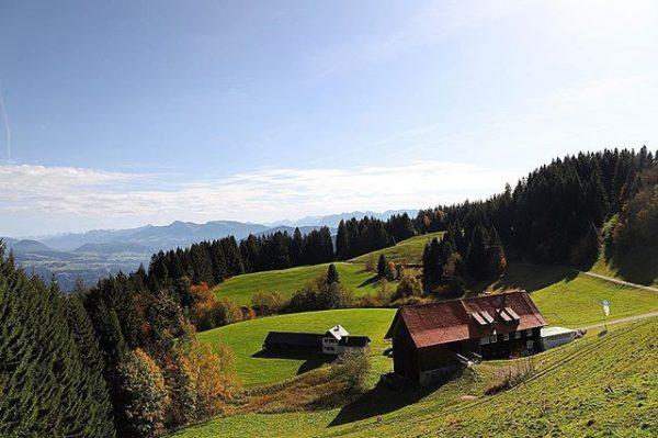 •Pfänderdohle• #gasthaus #bregenz #bregenzerwald #vorarlberg #austria #hiking #autumn Bregenz (Austria) - Pfaenderspitze