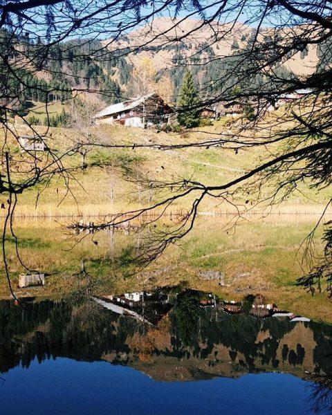 Seewaldsee 🌲 . . #grosseswalsertal #seewaldsee #fontanella #vorarlberg #visitvorarlberg #vorarlbergwandern #outdoors #austria #berge ...