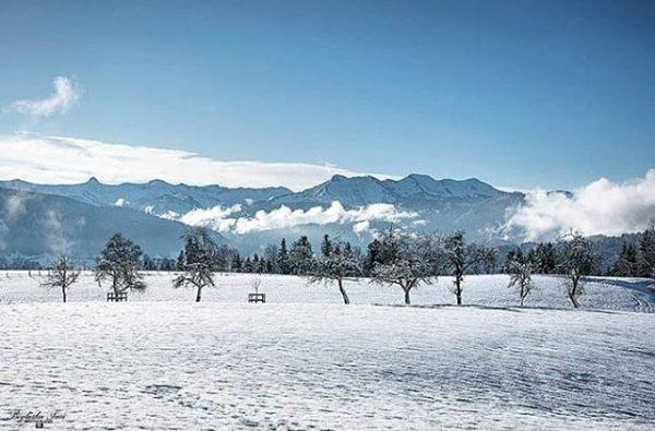 Winter days 📸 by @boglarkatasiphotography #visitbregenzerwald #bregenzerwald #vorarlberg #austria #langenegg #bregenzerwaldgebirge #mountains #snow ...