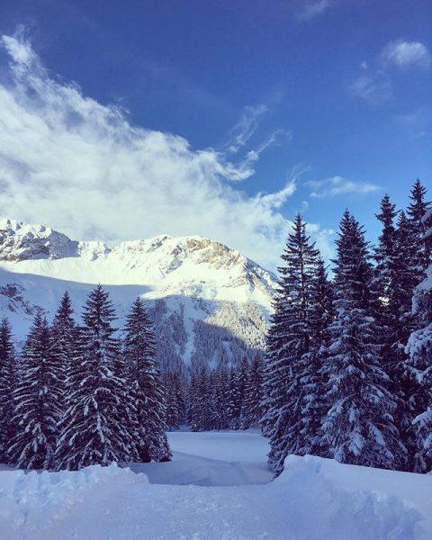w i n t e r | 🌲 . #idyllisch #winter #brandnertal #winterwandern ...