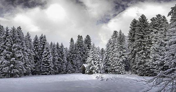 ❄ #winter #winterwonderland #winterishere #schnee #snow #wald #snow #nature #adventure #forest #naturephoto #naturelove ...