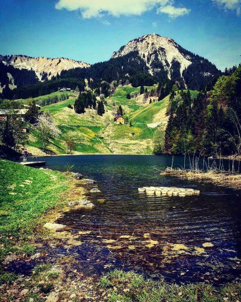 Der #Seewaldsee bei #Fontanella . 🔸🔸🔸🔸🔸🔸🔸🔸🔸🔸🔸🔸🔸🔸 . Foto: @draganatrisic . 🔸🔸🔸🔸🔸🔸🔸🔸🔸🔸🔸🔸🔸🔸 ➡️ #VorarlbergWandern ...