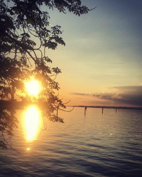 🛶 🎣 Wirtshaus am See