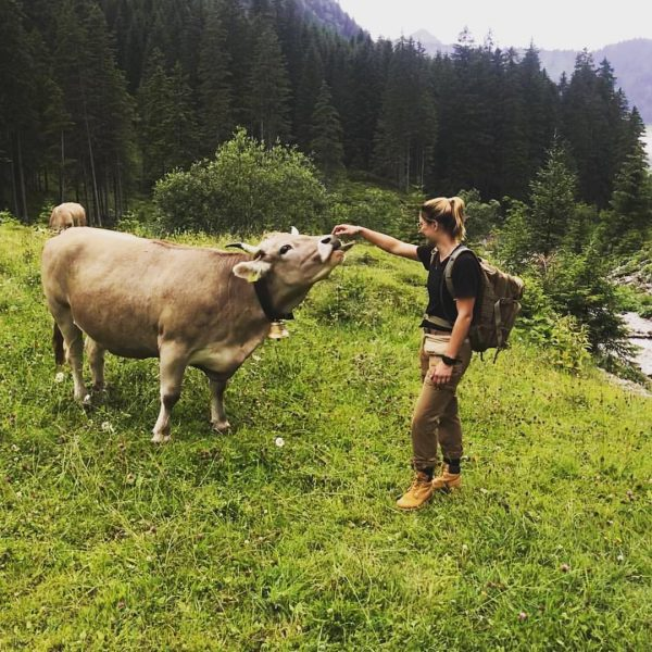 My new girlfriend 🐄 #austria #kleinwalzertal #mittelberg #schafalpenkopf #tracking #outdoor #nature #pasture #mauntain ...