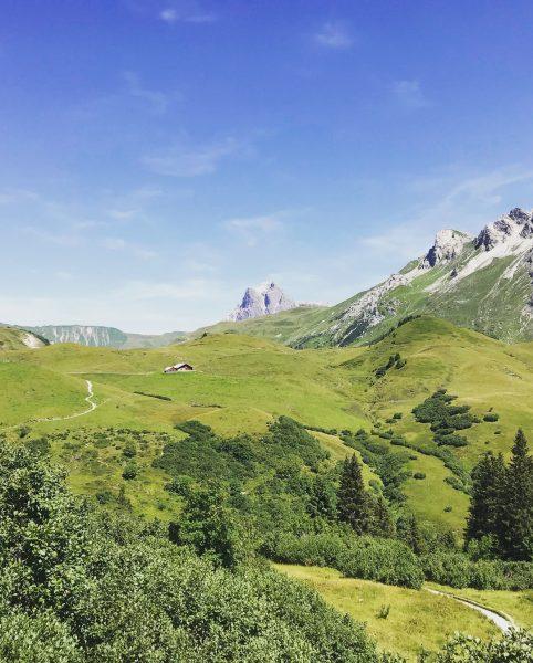 Sommer von seiner schönsten Seite. Blick auf die Gaisbühelalpe, das Karhorn und nach ...