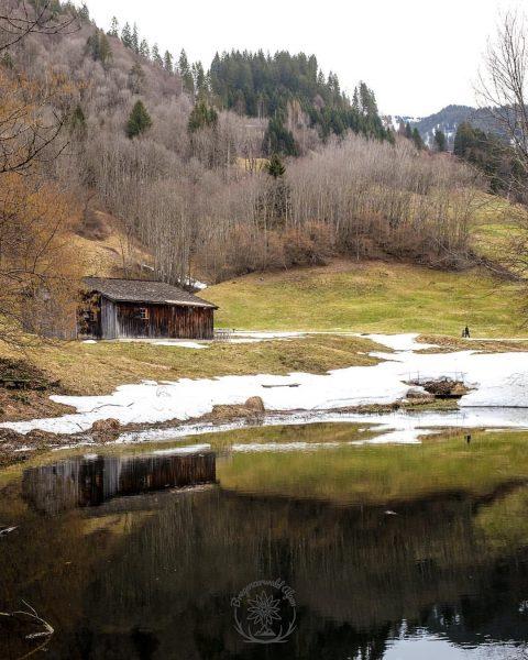 Holdamoos, a cabin that is 420 years old. #vorsässhütte #bregenzerwald #austria 🇦🇹 #österreich ...