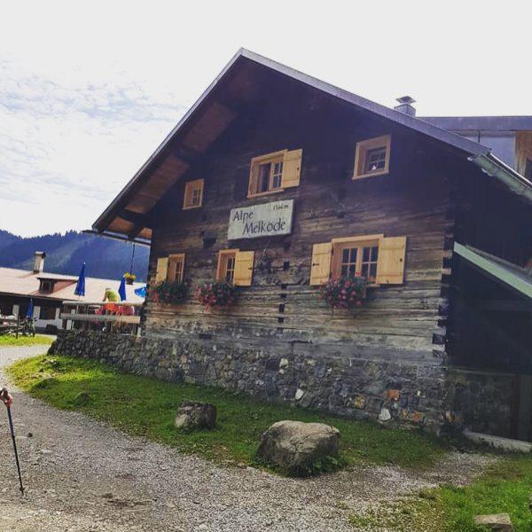 Gestern ging's mit unseren Hausgästen vom Hotel, Sonnalp Zaferna bis hoch zur Melköde ...