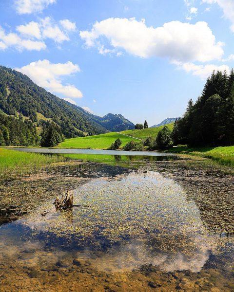 𝓛𝓮𝓬𝓴𝓷𝓮𝓻𝓼𝓮𝓮 • • • • • #hittisau #lecknersee #vorarlberg #vorarlbergwandern #hiking #hikingadventures #austria ...