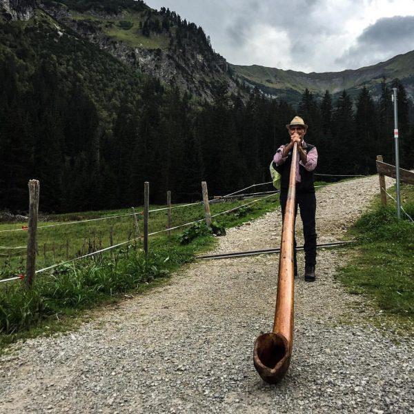 """Habt ihr schon mal das Alphorn """"in freier Wildbahn"""" erlebt? Gestern und heute ..."""