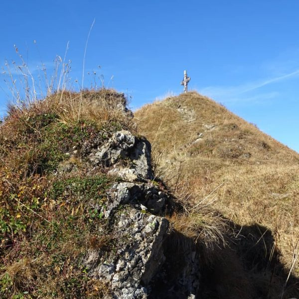Herbstwanderung auf das Zafernhorn #zafernhorn #fontanella #faschina #grosseswalsertal walsertal #biosphärenpark #bergsteigerdorf #herbst #farbenfroh ...