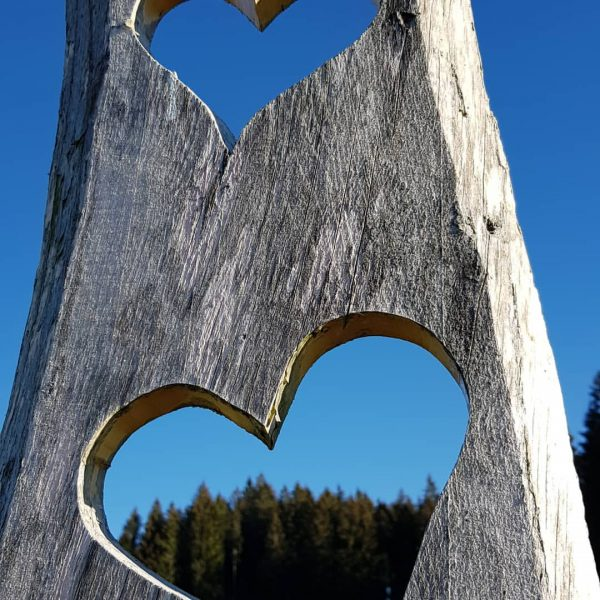 Love is in the air #lovethatplace #loveit #natur #autumn #loveisintheair #sunnyday #withbestfriends Möggers, Vorarlberg, Austria