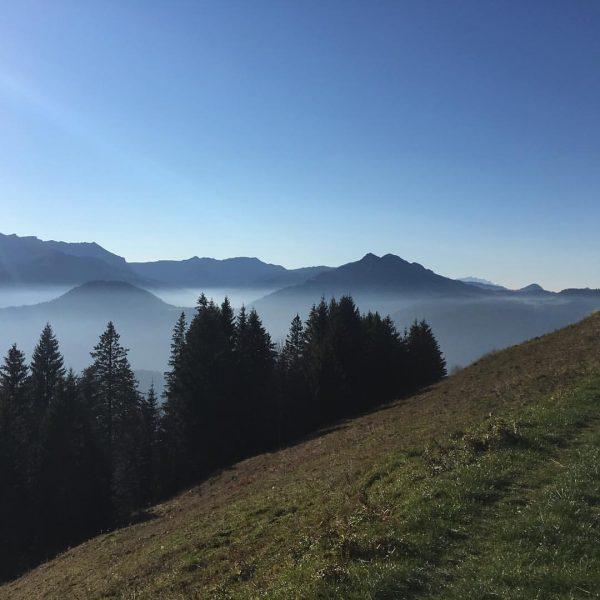 An Tagen wie diesen sollte man es nicht versäumen, eine schöne #herbstwanderung im #bregenzerwald zu machen🍂🍁☀️ #schtûbat...