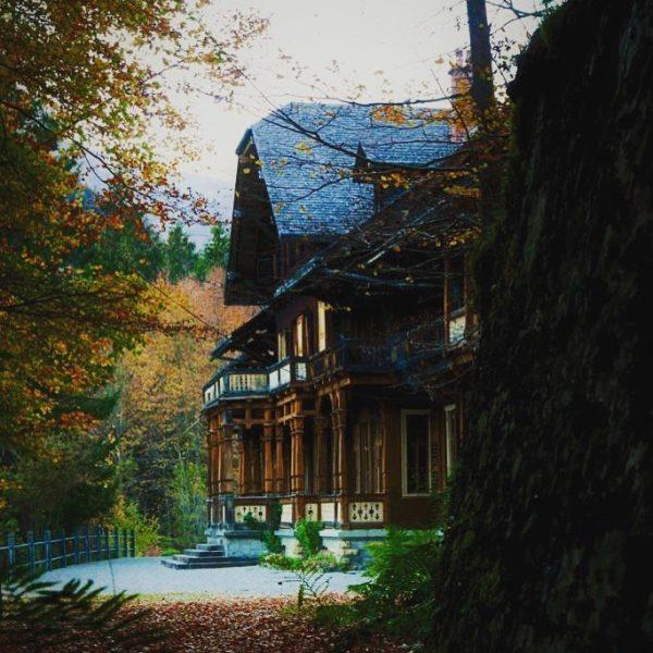 Oh hello autumn 👋🍁🍂 #cosydays #mystique #villamaund #eventlocation #weddinglocation #mountainwedding #visitvorarlberg #visitbregenzerwald #schoppernau ...