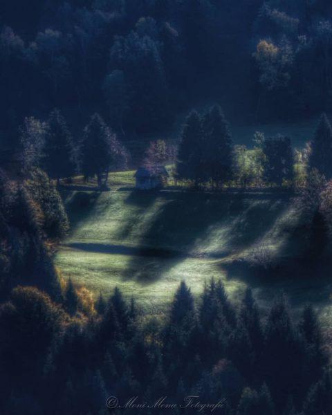 Allein sein zu müssen ist das Schwerste, allein sein zu können das Schönste. ...
