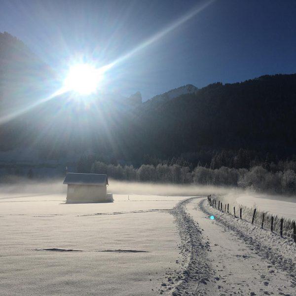 Die Winterwanderwege und Loipen sind präpariert, die Sonne scheint, der Diedamskopf startet am ...