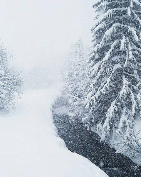 Snow, Snow, Snow...❄❄❄ #klösterleamarlberg #winterinmountains #winterwonderland #klösterle #klostertal #Austria #vorarlberg #mountainsworld #mountains #winter ...