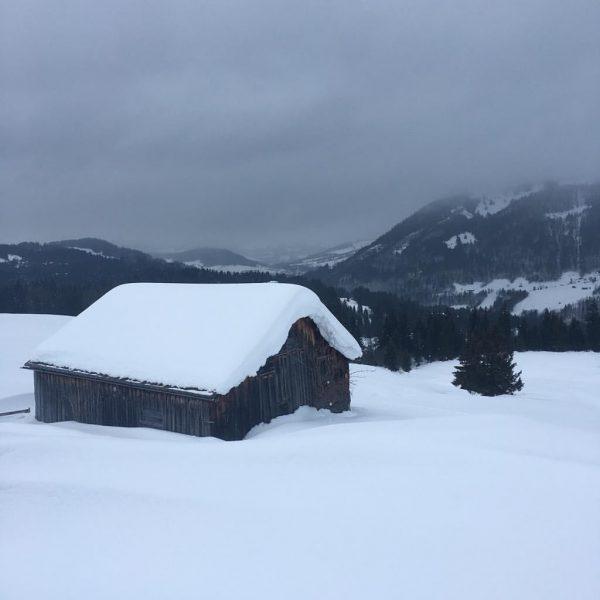 Winterwanderung in Schetteregg 🥾 ❄️ #schtûbat #bregenzerwald #schetteregg #visitvorarlberg #visitaustria #winterwanderung #outdoor #weekendmood #winterholiday #vacances #naturelovers #holidayactivities...