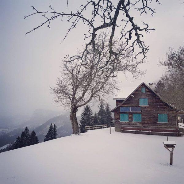 Der Schnee ist da und schmückt unsere Alpe Gsohl endlich im weißen Kleid ...