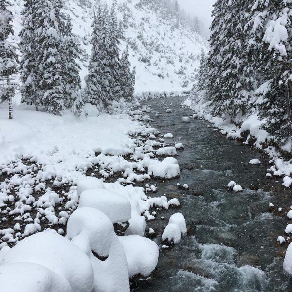 WINTER #winterwonderland #winter #snow #river #holidays #unterwegsmitkindern #ilovenature #white #weiss #berge #skilanglaufen