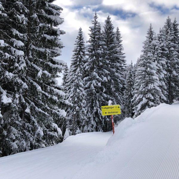 Hättet Ihr's gewusst? Von der Heuberg-Bergstation gelangt Ihr über den Oberen Höhenweg zu ...