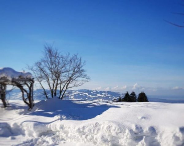 What a view 💙 Treat yourself at #Rickatschwende ☀️🌊 . . . #fxmayr ...