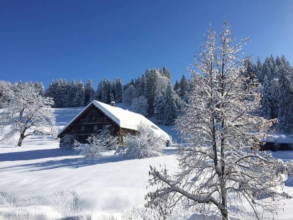 Whether a nice snowshoe excursion or skiing and snowboarding on the piste, at ...