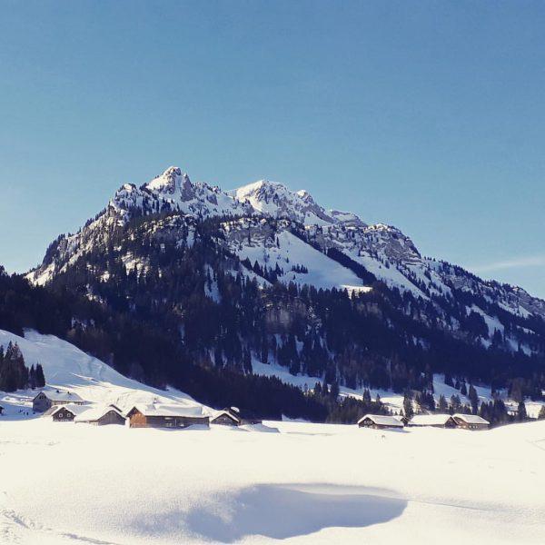 Yesterday in #schönenbach in the #bregenzerwald ! The sunny and warm weather is ...