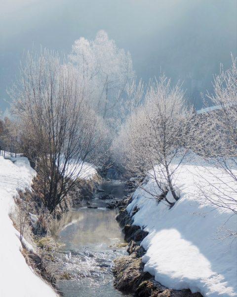 ❄️❄️❄️🌞❄️❄️ #autriche #österreich #austria #bregenzerwald #vorarlberg #reuthe #bizau #bezau #mellau #natureonly #naturephotography #naturelovers ...