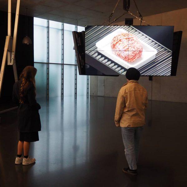Achtung: Gratis Kurzführung im @kunsthausbregenz mit den Peer Guides Marie und Vanessa am ...