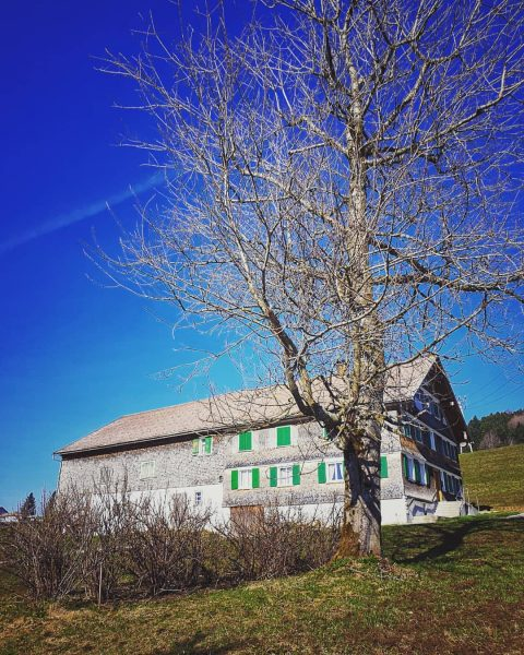 #ruralscape. #bregenzerwald #langenegg #visitvorarlberg #rural #woodenhut #ruralarchitecture #tree #house #pasture #greenery #sky #nature ...