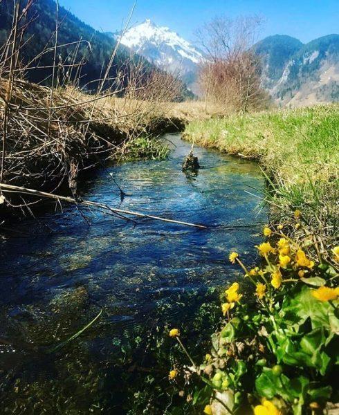 Spring feeling down in the valley 📸 by @margitmoosbrugger #visitbregenzerwald #bregenzerwald #vorarlberg #austria ...