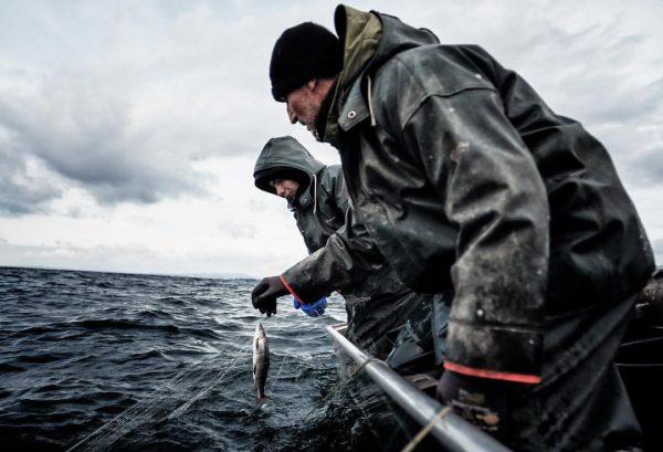 Karl von der Fischerei Kapfhammer in Nonnenhorn legt täglich seine Netze aus, bei jedem Wetter und zu...