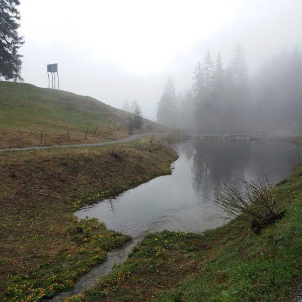 So ein Regenwetter hat schon auch was. Was meint ihr? 🌧🌂💦 Der Alpine ...