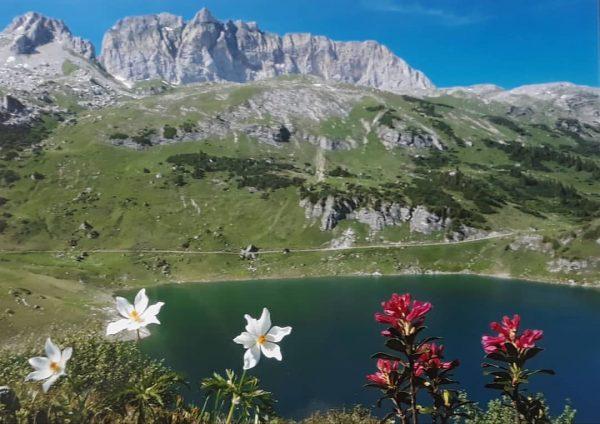 #in #instagram #österreich🇦🇹 #österreich #austria #austria🇦🇹 #ausflug #trip #vorarlberg #see #lake #klostertal #dalaas ...