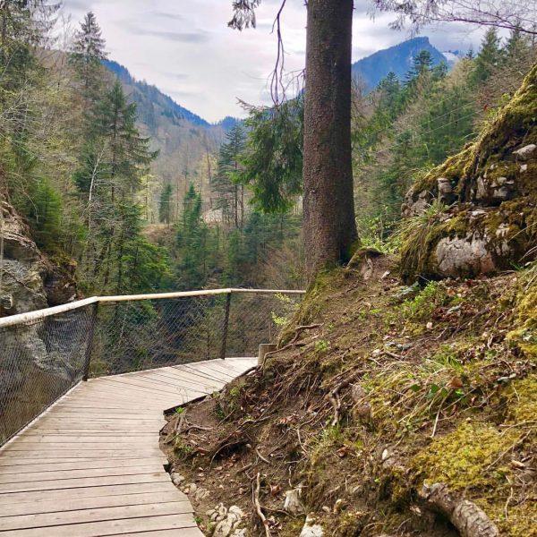Обожаю это местечко со множеством красивых водопадиков! Столько природной энергии в этом! #rappenlochschlucht ...
