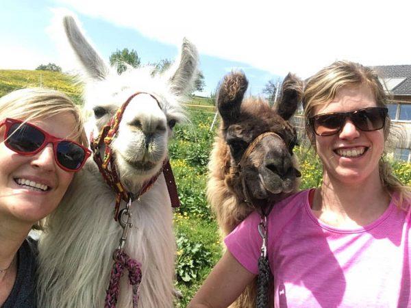 Smile! 😃 #langenegg #lama #llama #animals #visitvorarlberg #cute #instapics #selfie #bestday #awesome #fun ...