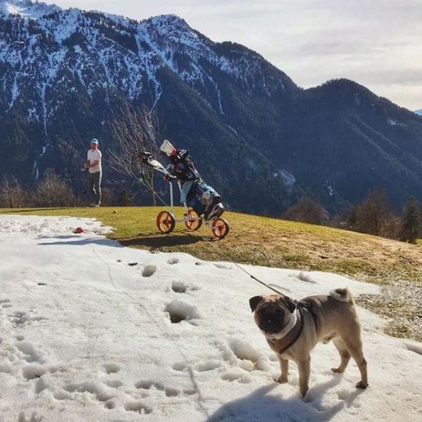 Me and papa playing golf 🏌🏻♂️⛳️ #likefatherlikeson . . . . . #pug ...