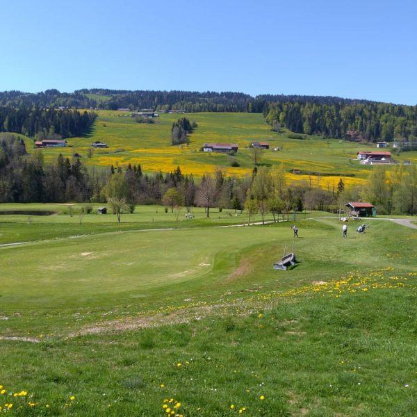 #GolfParkBregenzerwald #outdoor #golf #sport #fun #spring #riefensberg #bregenzerwald #oberstaufen #allgäu ⛳🏌️🌼www.golf-bregenzerwald.com Tel+43 (0)5513-8400-0 Riefensberg, Vorarlberg, Austria