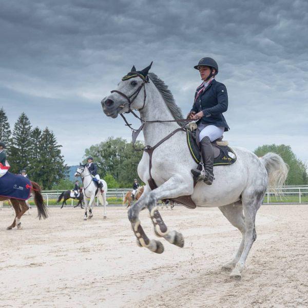 #reiten #springsport #springen #rzh #reitsport #hard #vorarlberg #austria #landesmeisterschaft #nikon #nikonphoto #equestrian #horse #horsejump #horsesofinstagram #picoftheday #cavallo...