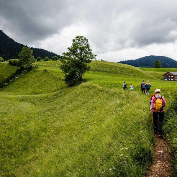 Wandern mit der Familie #vorarlberg #übleschlucht #mitdembestenmann #allesgrün