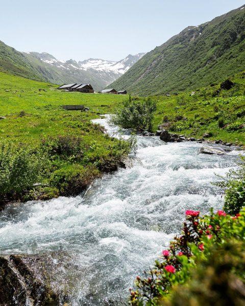 Im Vergaldental #gargellen #meinmontafon #visitvorarlberg #visitaustria #hiking #alps #alpstraveller #sommer #austrianalps #alpen #mountains ...