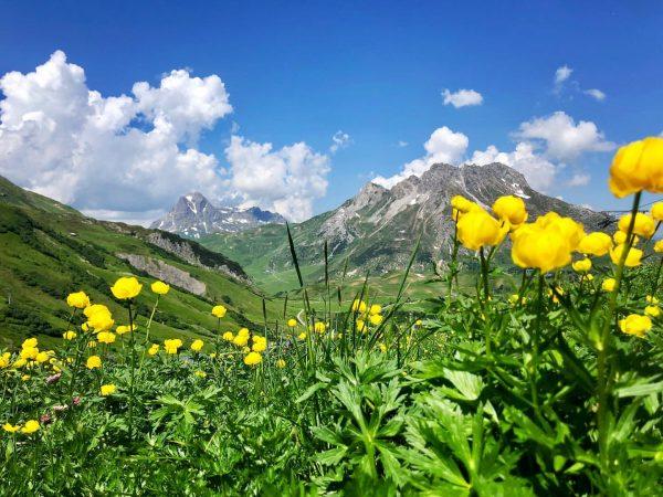 come and explore this beautiful natureparadise in summer 💕 @lechzuers #summer in #lech #arlberg #austria #natureparadise #urlaubinösterreich...