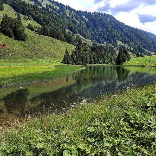 Lecknersee Bregenzerwald #austria #österreich #vorarlberg #lakeofconstance #wandern #hiking #nagelfluhkette #see #lake #summer #summervibes ...